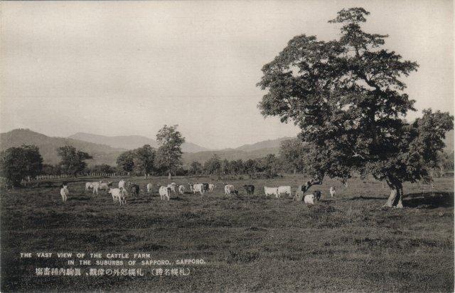 札幌郊外の偉観、真駒内種畜場 ホームページに戻る 鹿児島の昔の写真を見る 名古屋の昔の写真 第十